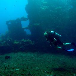 Diving Toward Sunken Treasures